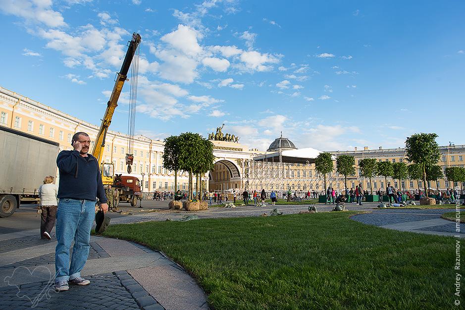 сад на Дворцовой площади